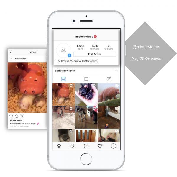 60k pets instagram account for sale