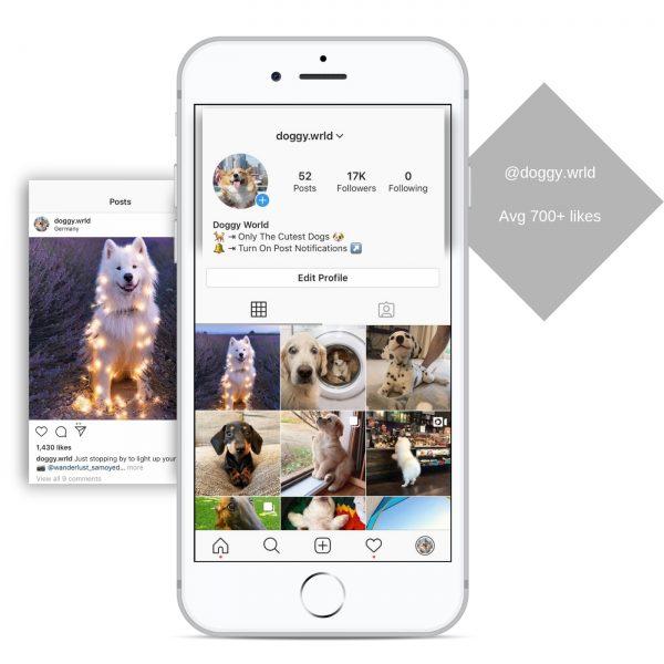 17k travel instagram account for sale